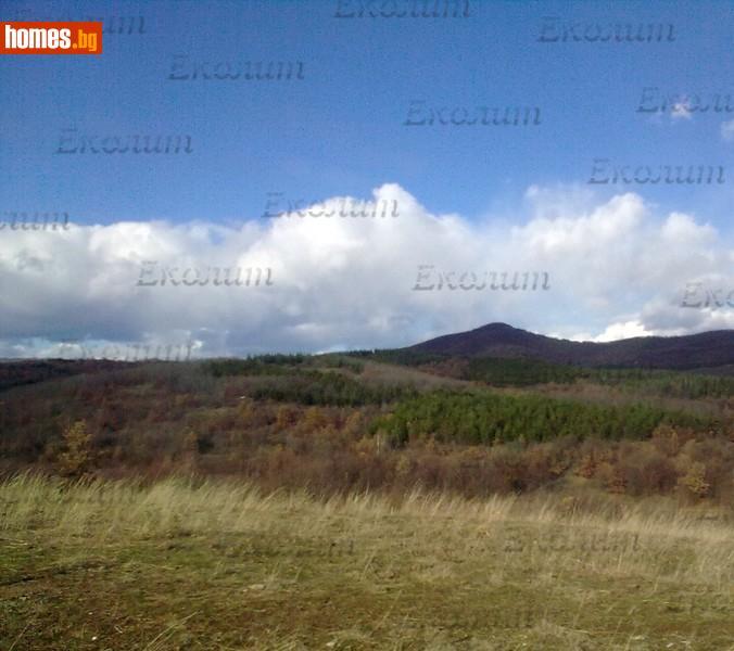 Земеделска земя, 2500m² - Земя за продажба - Еколит